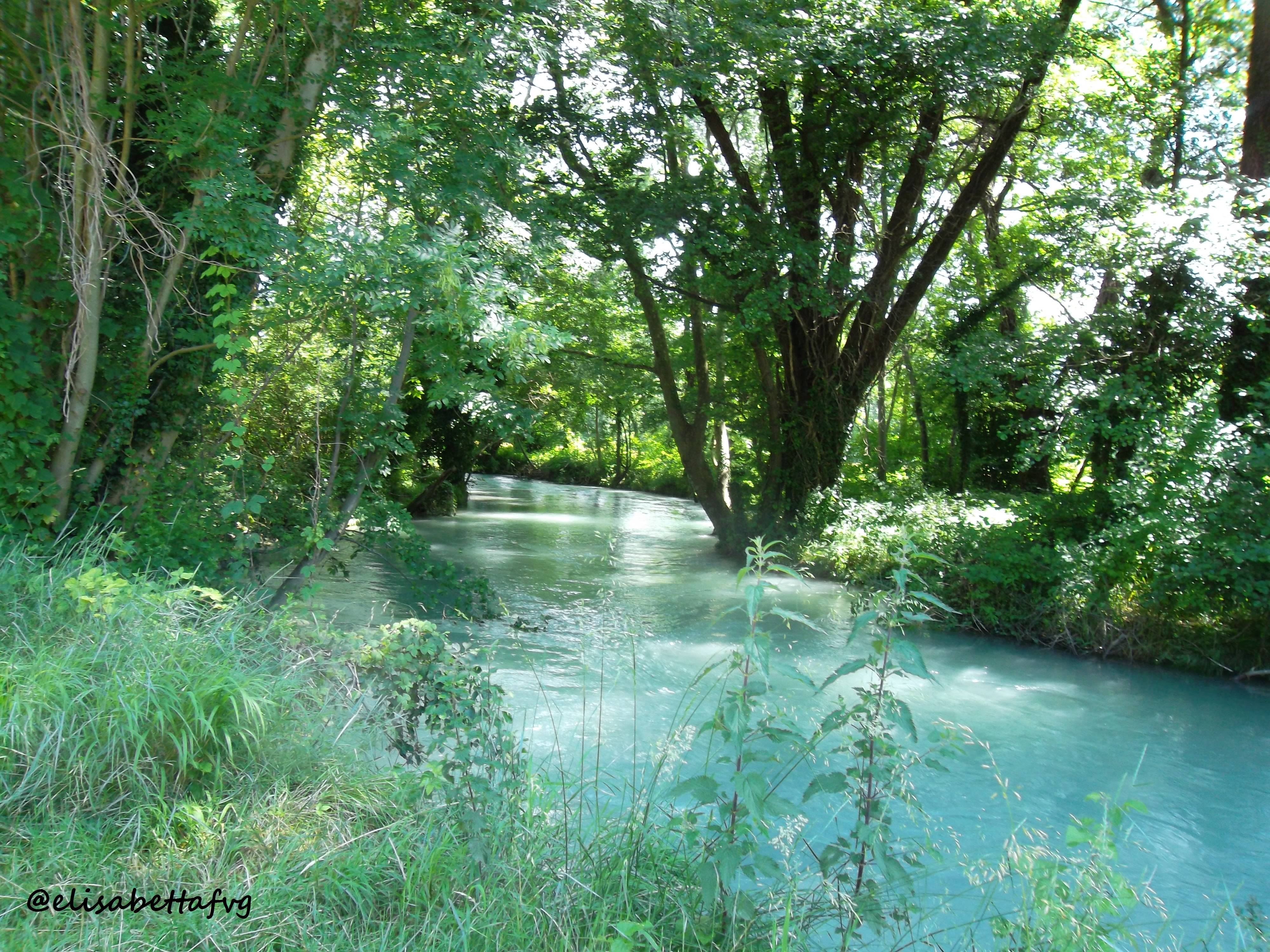 11-CANALE