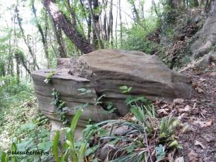 roccia 1