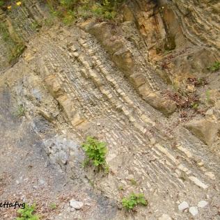 roccia 4