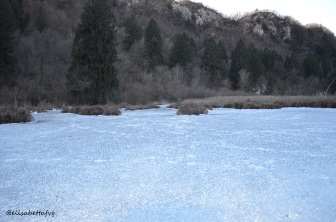 Ice-Palude!