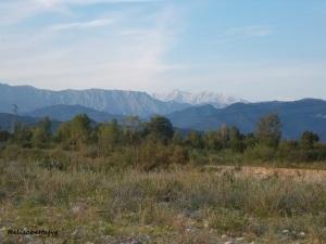Monte Canin dalla pianura friulana